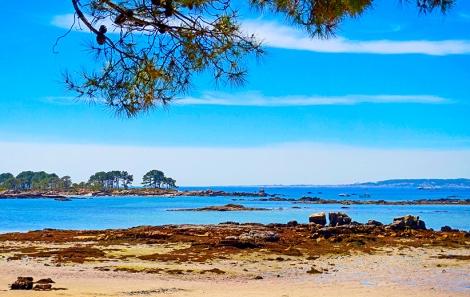 Illa d'Arousa. Galicia