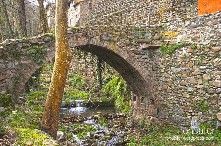 Pont romànic de La Noguerola. Excursió per la riera d'Osor. La Selva.